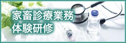 家畜診療業務体験研修